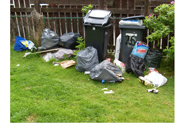 Public health nuisance - accumulation of domestic refuse can attract vermin