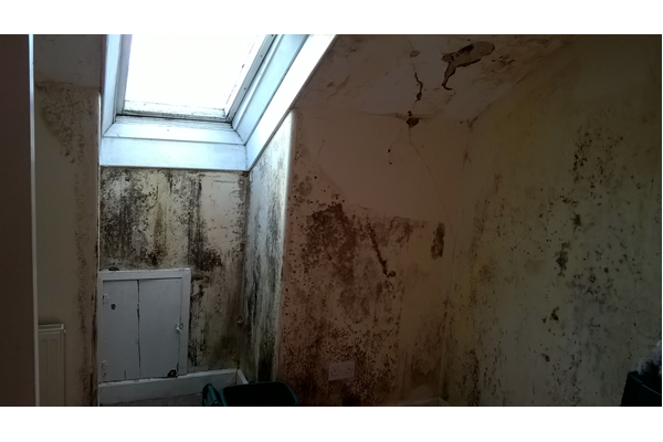 Public health nuisance - dampness in a residential property