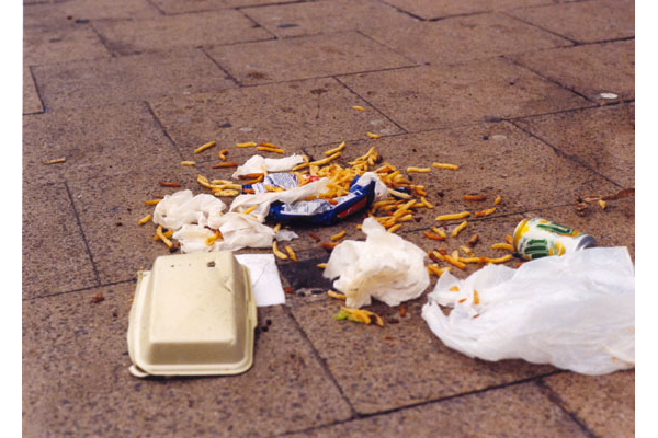 Litter can attract vermin and causes an eyesore